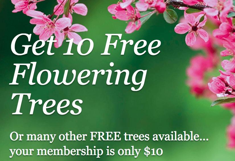 arbor-day-free-trees